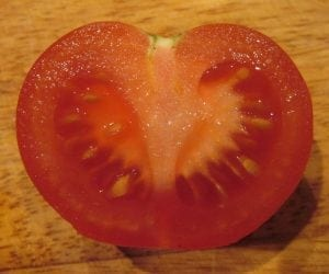 tomato berry fleshy fruit