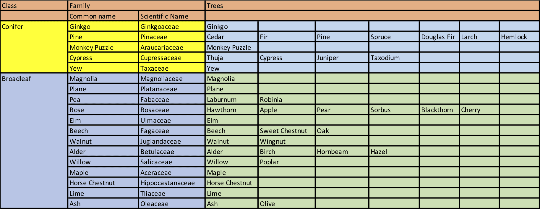 tree families